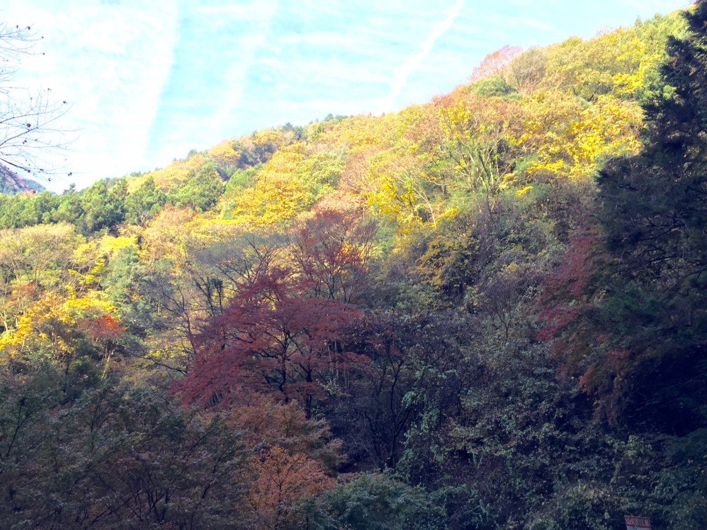 神戸岩周辺